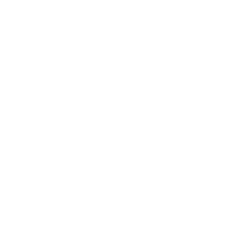 Logo The Iceland Trail